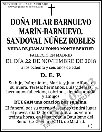 Pilar Barnuevo Marín-Barnuevo, Sandoval Núñez Robles